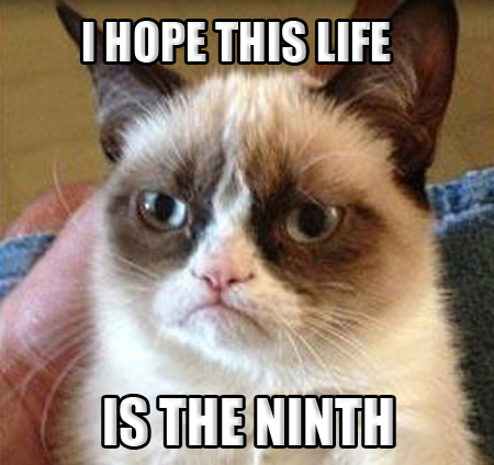 Grumpy-Cat-NINE-LIVES.jpg
