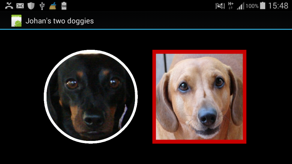 my2doggies2.png